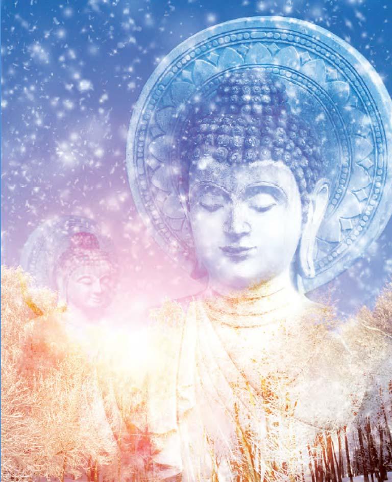 Buddhas-in-Winter